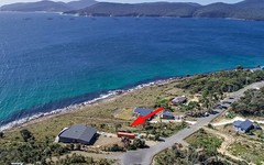 606 White Beach Road, White Beach TAS