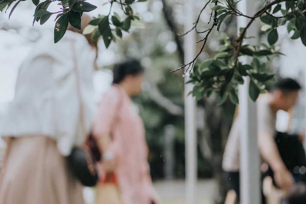 50757662583_bfe8ea06b2_b- 婚攝, 婚禮攝影, 婚紗包套, 婚禮紀錄, 親子寫真, 美式婚紗攝影, 自助婚紗, 小資婚紗, 婚攝推薦, 家庭寫真, 孕婦寫真, 顏氏牧場婚攝, 林酒店婚攝, 萊特薇庭婚攝, 婚攝推薦, 婚紗婚攝, 婚紗攝影, 婚禮攝影推薦, 自助婚紗