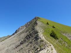 Sentier de la Pointe de Chaurionde au Col d'Orgeval