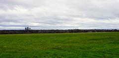 Photo of Woking skyline