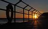 Sunrise through the Fence