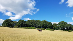 Photo of Bishops Castle d