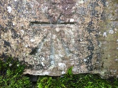 Photo of Cut benchmark - Hazelrigg, Staveley-in-Cartmel