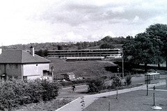 Photo of Negative 115C JHS from Ettrick Terrace 1971