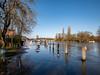 Flooded Henley, January 2020