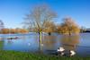 Flooding, St Neots, Cambridgeshire