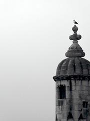 Torres de vigilancia