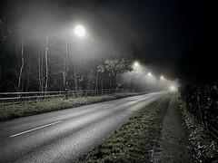 Photo of Misty Evening