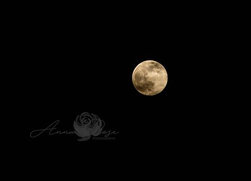 Pink Moon 2020-