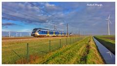 NSR 2311+ NSR 2742 ( SNG/CAF-Cifity) Swifterband ( NL)