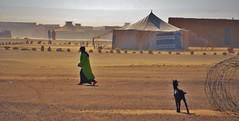 Camps de refugiats.