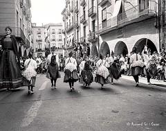 Cavallets i Gegants - Girona 2002