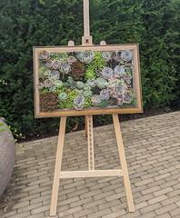 Photo of Flowers, Framed
