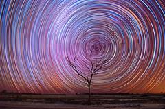 Star Trails at Nambling Lakes - Dowerin, Western Australia