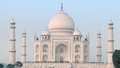Le Taj Mahal (Agra, Inde)