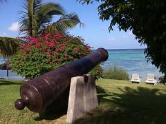 Mauritius Beach Palm Trees Gun Edit 2021