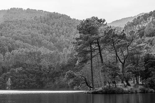 Lac de Cambous, Gard, France