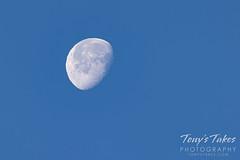 January 3, 2021 - The daytime moon. (Tony's Takes)