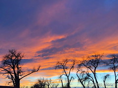 January 2, 2021 - A colorful view at sunset. (Jess Bloom)