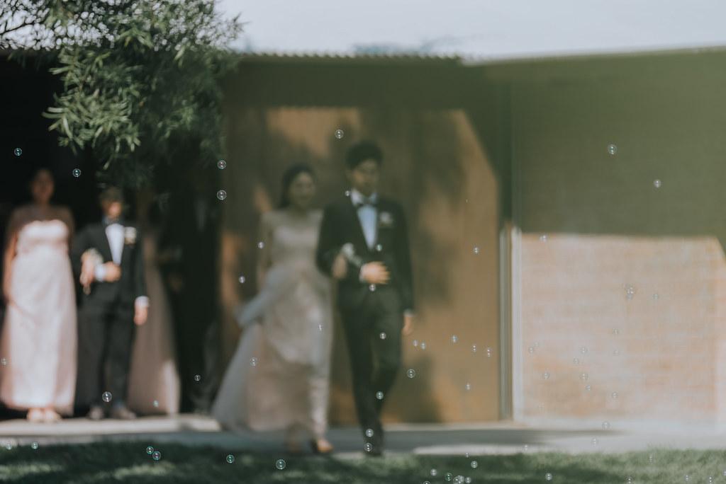 50805681571_23c860c7c4_b- 婚攝, 婚禮攝影, 婚紗包套, 婚禮紀錄, 親子寫真, 美式婚紗攝影, 自助婚紗, 小資婚紗, 婚攝推薦, 家庭寫真, 孕婦寫真, 顏氏牧場婚攝, 林酒店婚攝, 萊特薇庭婚攝, 婚攝推薦, 婚紗婚攝, 婚紗攝影, 婚禮攝影推薦, 自助婚紗
