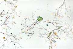 """""""Swan Lake"""" de G. Steiner et J. Lenzlinger (Helsinki, Finlande)"""