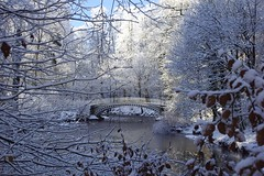 Photo of The White Bridge in a white landscape