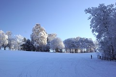 Photo of Winter golf
