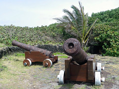 Cannons Gun Military Vintage Edit 2021
