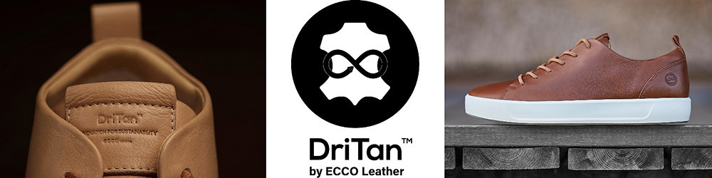 ECCO 210106-1