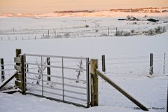 Photo of gateway to frost and snow