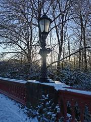 Photo of Snow Lamp