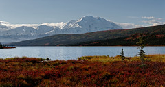 One of 62 Ways to Beat Stress and Feel Great in the US is to Go to Denali National Park
