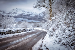 Photo of Road to Winter Fell