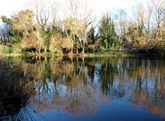Photo of Kew Lake