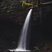 Columbia Gorge Photoshoot