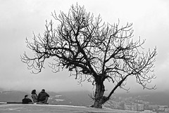 Conversaciones de invierno