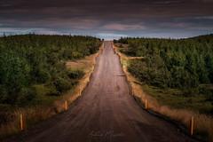 Upphéraðsvegur Route 931 (Iceland)