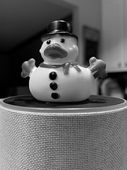 Alexa, what would a snowman rubber duck look like? (013/365)