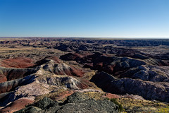 Being a Protector of Nature While Taking in Views (Petrified Forest National Park)