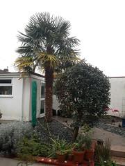Photo of 14 January 2021 Exeter