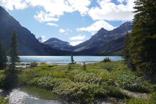 Icefield Parkway - lac Bow