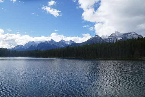 Icefield Parkway - lac Herbert