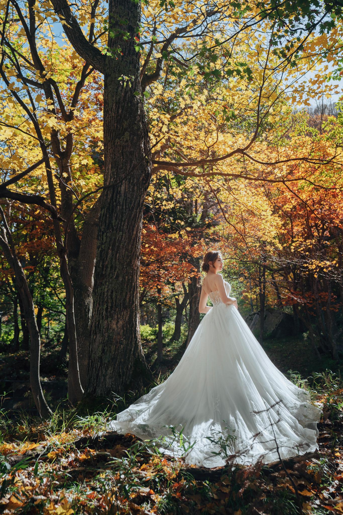 EASTERN WEDDING, Donfer, 海外婚紗, 北海道婚紗, 楓葉