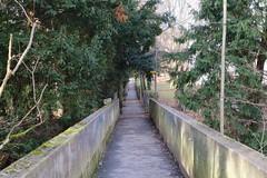Passage des Écureuils @ Chêne-Bourg