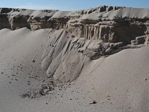 Desert Scenes