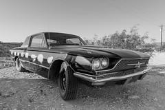 Thunderbird, Terlingua, Texas