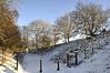 Snowy Walk 2