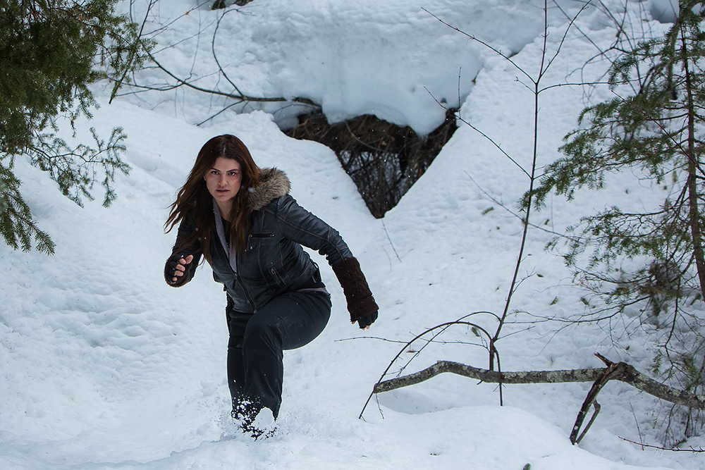 Wolf 210115-1