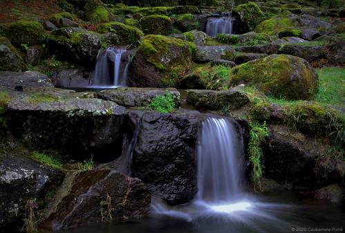 Japanese Garden and Miniature Falls