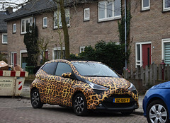 Toyota Aygo - Leopard print